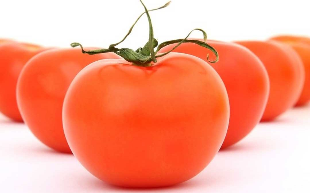 Composto do tomate previne diabetes, segundo cientistas